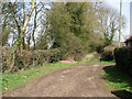 TM2492 : Bridleway from Lundy Green to Hempnall Green by Evelyn Simak