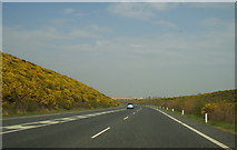 T2270 : Arklow Bypass by Sarah777
