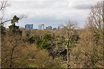 TQ1876 : View From The Xstrata Treetop Walkway by Martin Addison