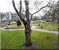 SJ8590 : East Didsbury Gardens by Gerald England