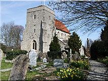TQ1711 : St Andrew's church, Steyning by Paul Gillett