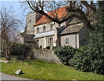 TQ1711 : St Andrew's Church Steyning by Paul Gillett