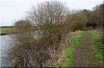 SP4508 : The Thames Path enters Wytham Great Wood by Bill Boaden