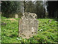 TQ8212 : Headstone at Old Church of St Helen by Oast House Archive