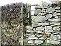 SD2986 : Stile and gate, Lowick by Maigheach-gheal