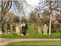 SJ7998 : Weaste Cemetery by David Dixon