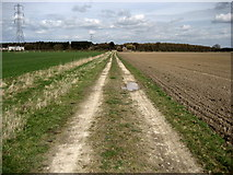 SE6757 : Bridleway across Sand Hutton Common by Chris Heaton