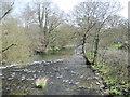 SJ2422 : River Tanat downstream by John Firth