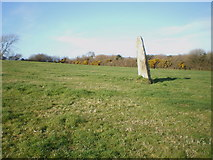 SN0038 : Standing Stone leaning at Dinas Cross by Richard Law