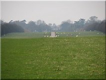 SP4317 : Way towards Ditchley Gate by Sarah Charlesworth