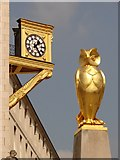 SE2934 : What's the time, Mr Owl? by Ian Paterson