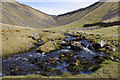 NY7325 : High Cup Gill by Ian Taylor