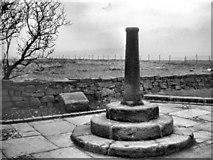 SD7513 : Roman Cross at Affetside by David Dixon