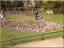 TQ2780 : Flowerbed in Hyde Park by Robert Lamb