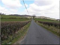 C1416 : Road at Edenacarnan by Kenneth  Allen