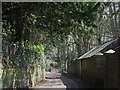NY9964 : Spoutwell Lane (3) by Mike Quinn