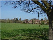 SU9567 : Fields, Sunningdale by Alan Hunt