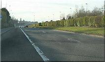 O2325 : Cabinteely, County Dublin by Sarah777
