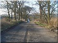 NS5972 : Road at Buchley by Stephen Sweeney