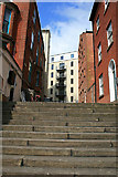 SK5640 : Steps from Derby Road by David Lally