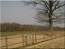 TQ7033 : Stiles near Combwell Priory Farm by David Anstiss