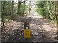 TQ6934 : Footpath towards the A21 London Road by David Anstiss