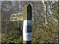 NY4367 : Squirrel notice on signpost by Rose and Trev Clough