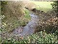 N9945 : Stream, Lustown, Co Meath by C O'Flanagan