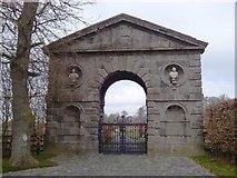 N9642 : Dolly's Grove, Co Meath by C O'Flanagan