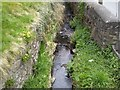 N9343 : Small Stream, Kilclone, Co Meath by C O'Flanagan