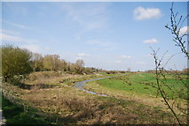 TQ5203 : River Cuckmere near Alfriston, looking upstream by N Chadwick