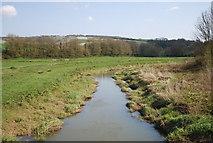 TQ5203 : River Cuckmere near Alfriston: downstream by N Chadwick