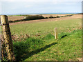 TG1242 : Fields east of the North Norfolk Railway line by Evelyn Simak