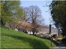 SX9050 : Spring at Coleton Fishacre by Derek Harper