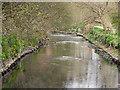 SD8605 : River Irk by David Dixon