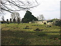 N9890 : Church and graveyard at Stickillin, Co. Louth by Kieran Campbell