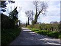 TM3166 : Low Road, Bruisyard by Geographer