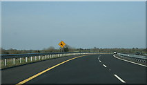 M9739 : The M6, County Roscommon (8) by Sarah777