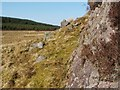 NS3482 : Rock outcrop near Ben Bowie by Lairich Rig