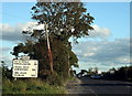 N3524 : Tullamore, County Offaly by Sarah777