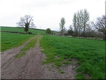 H4869 : Edenderry Townland by Kenneth  Allen