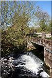 SP5720 : The Langford Brook by Des Blenkinsopp