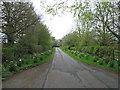 NZ2097 : Lane to Home Farm, Eshott by Alex McGregor