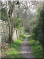 NY9864 : Footpath between Orchard Vale and West Green by Mike Quinn