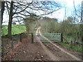 SP1130 : Bridleway to Cutsdean Hill by Michael Dibb