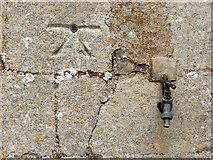 TF5315 : St John's church, Terrington St John - bench mark by Evelyn Simak