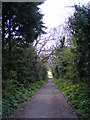 TM3977 : Path to the B1123 Holton Road by Geographer