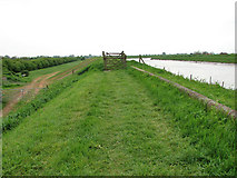 TF5902 : The Fen Rivers Way south of Downham Market by Evelyn Simak