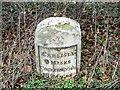 NY2847 : Milestone, Jenkin Cross by Maigheach-gheal