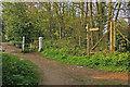 TQ2255 : Footpath junction near Motts Hill Lane by Ian Capper
